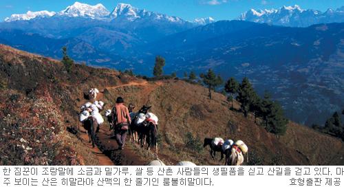 [책과 길] 네팔 산촌,여리고 순한 사람들을 만나다… '꽃향기 두엄냄새 서로 섞인들'