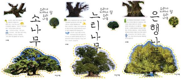 넉넉하고 강인한 우리 나무 셋
